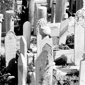 Cemetery in Istanbul